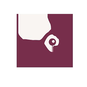 Bienen retten