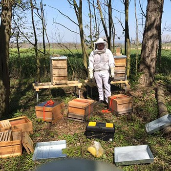 Imker Bienepatenschaft